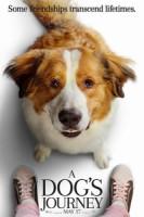 A Dog's Journey (cc/dvs)