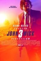 John Wick: Chapter 3 - Parabellum (cc/dvs)